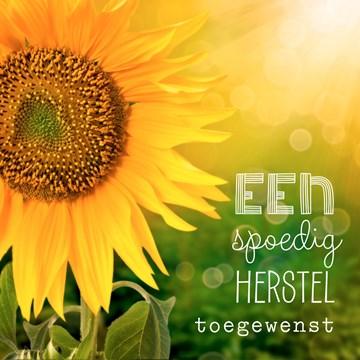 Beterschapskaart - zonnebloemen-spoedig-herstel