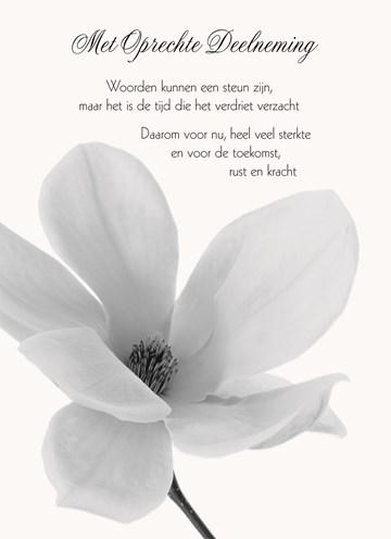 kaarten condoleance | hallmark