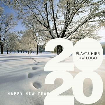 - winterlandschap-met-2020