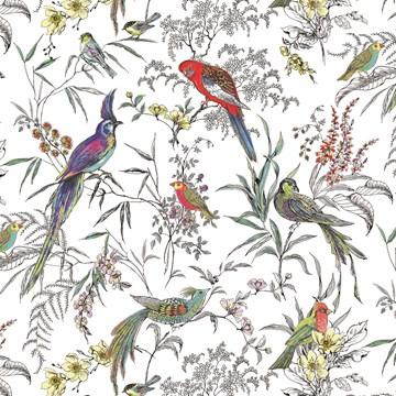 - gravure-met-vogels