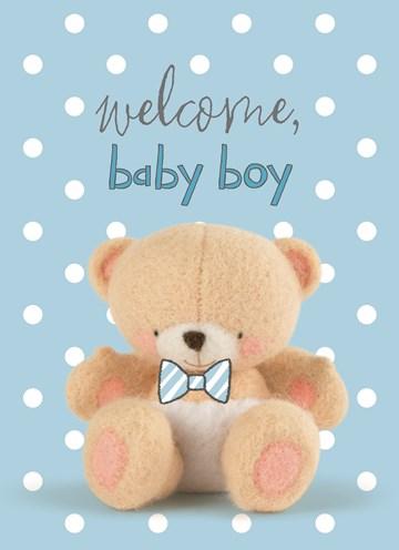 - Welkom-kleine-berenboy