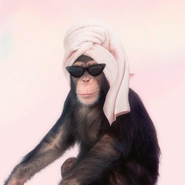- Zomerkaart-grappig-Aap-met-handdoek