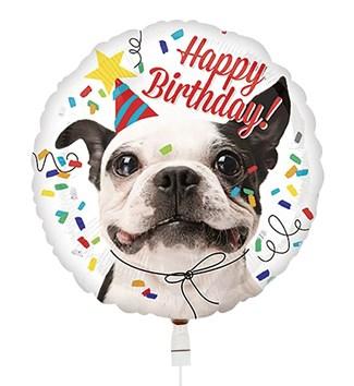 Ballon Verjaardag Hond Hallmark