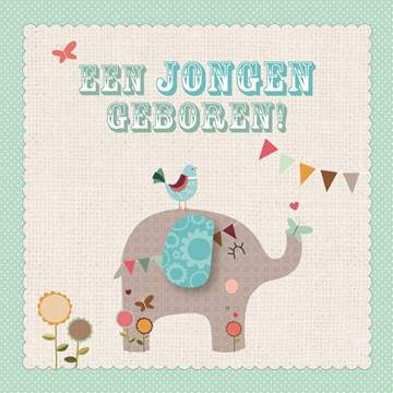 - olifantje-een-jongen-geboren