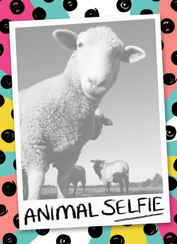 - fotokaart-animal-selfie-