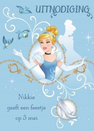 - princess-vogel-schoen-verjaardag