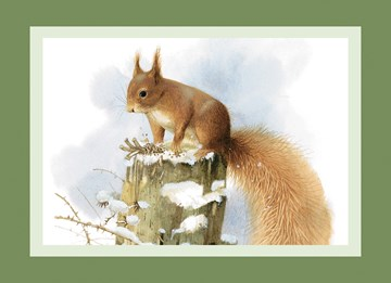 Winterkarte - Winter Grußkarte  - 74241A44-ACBA-44D8-B9FC-16BB62AAC0FC