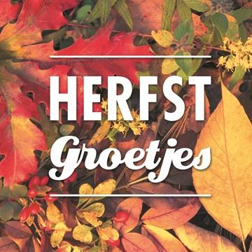 Herfst kaart - herfst-kaart-met-leuke-herfst-groetjes