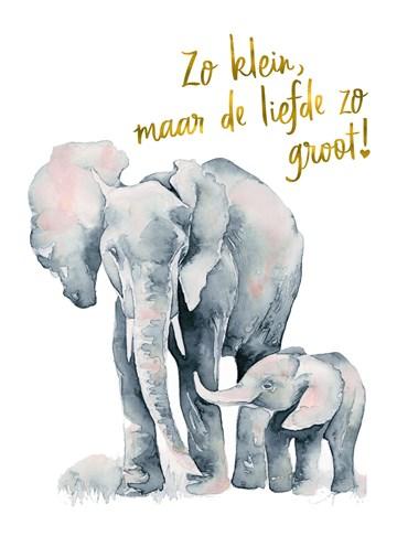 - de-grote-liefde-van-een-olifant