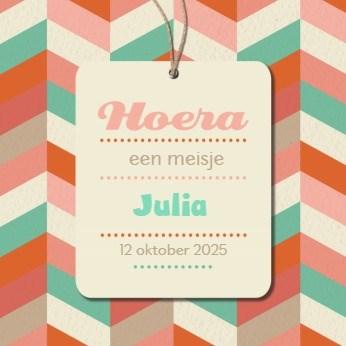 - hoera-een-meisje-kleurrijk-kaartje
