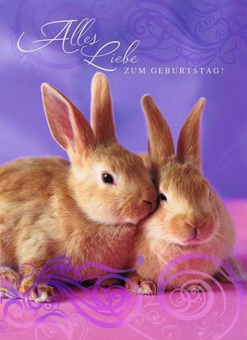 Geburtstagskarte Teen Mädchen - 1181E75B-63E5-4188-9166-D3816541EA92