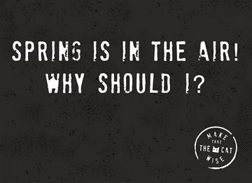 - spring-is-in-the-air-why-should-i