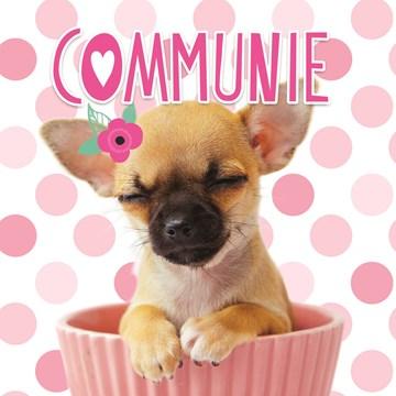 - schattige-hond-met-roze-bloem-communie-kaart
