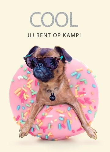 - Op-kamp-kaart-Cool-hondje-met-donut