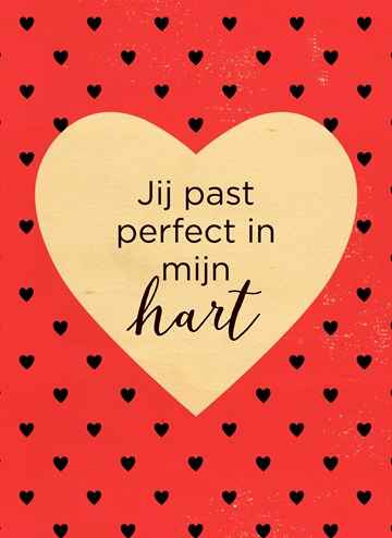 - hout-jij-past-perfect-in-mijn-hart