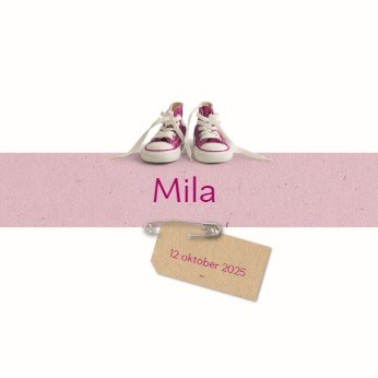 - twee-baby-schoentjes-roze