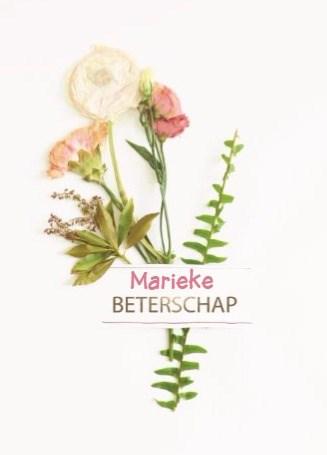 - botanical-kaart-beterschap-met-een-bloemetje