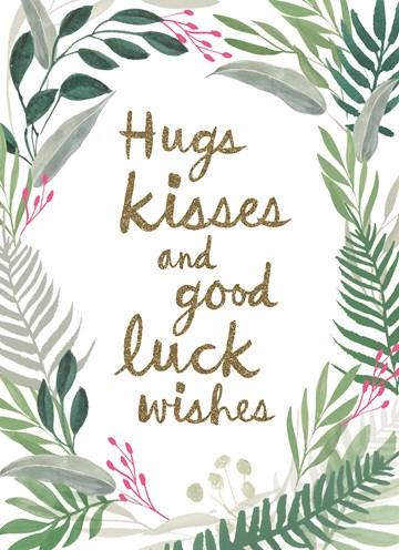 succes goed gedaan kaart - hugs-kisses-and-good-luck-wishes