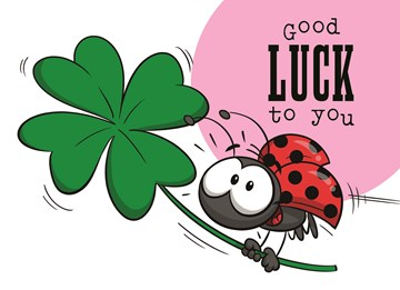 Succes / Goed gedaan kaart - funny-mail-good-luck-to-you