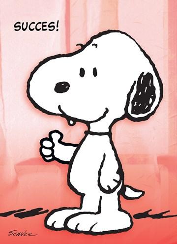 Snoopy kaart - 8B079140-4C1D-469D-A4C8-DD53D0FDE4AB