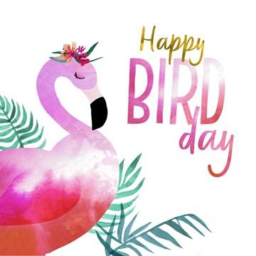 verjaardagskaart vrouw - happy-bird-day-van-een-pelikaan