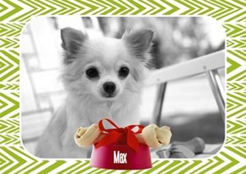 - fotokaart-met-hondje