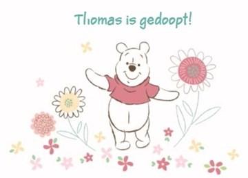 - disney-baby-winnie-the-pooh-tussen-de-bloemen