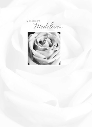 - roos-met-oprecht-medeleven