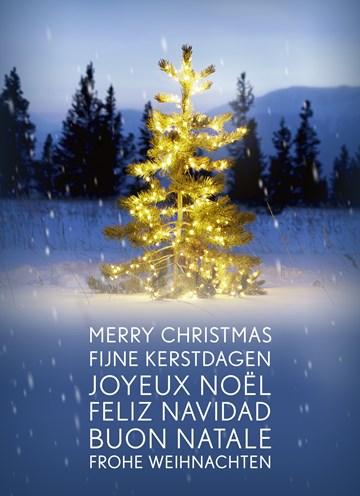 Kerstkaart - kerstboom-met-lampjes