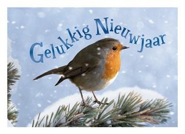 - nieuwjaarskaart-roodborstje