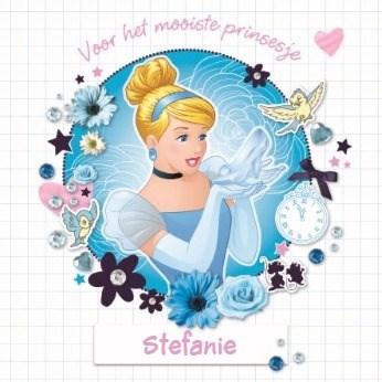 - disney-princess-assepoester-voor-het-mooiste-prinsesje