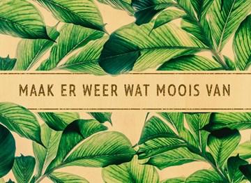 - botanical-maak-er-weer-wat-moois-van