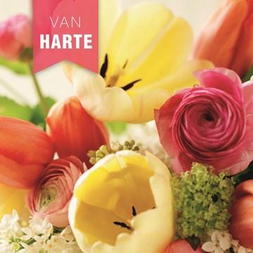 verjaardagskaart vrouw - closeup-van-bloemen