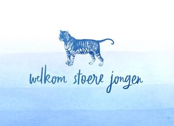 - een-blauwe-tijger-voor-een-stoere-jongen