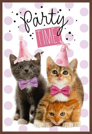 verjaardagskaart meisjes - party-time-kittens