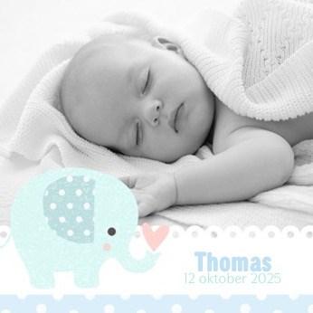 - fotokaart-met-blauwe-olifant