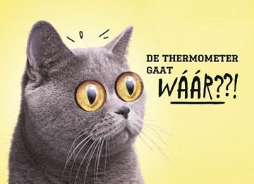 - animal-fiesta-de-thermometer-gaat-waar