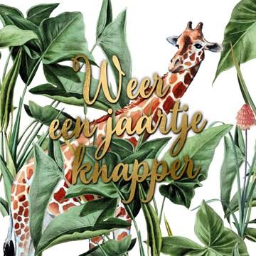 Verjaardagskaart vrouw - CLA-weer-een-jaartje-knapper-met-deze-giraffe-in-de-jungle