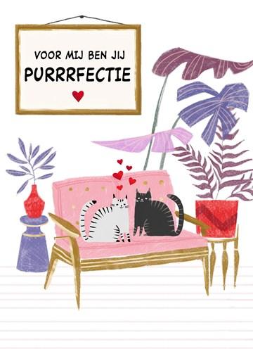 valentijnskaart - Valentijnskaart-grappig-Katten-Voor-mij-ben-jij-purrrfectie