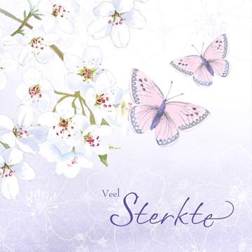 - veel-sterkte-bloesemtak-en-vlinders