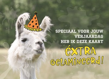 - animal-fiesta-extra-gelamineerd