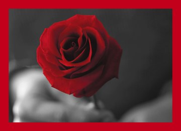 Hochzeitskarte - 7A889B2D-FF8C-4DC6-888A-7E2A0E2041A4