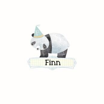 - geboorte-jongen-pandabeer