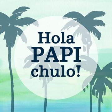 - hola-papi-chulo