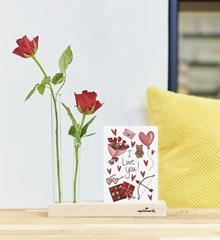 Brievenbusboeket Rose Solitaire