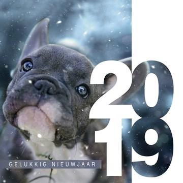 Nieuwjaarskaart - nieuwjaar-2018-gelukkig
