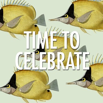 - time-to-celebrate-this-party