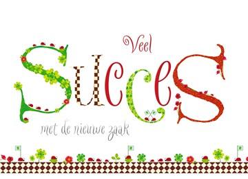 - succes-in-de-nieuwe-zaak