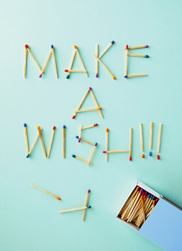 - make-a-wish-matches