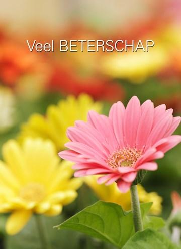 - Beterschapswensen-met-bloemen